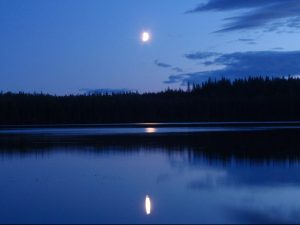 Moon Light Cruise